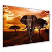 Wandbild Afrika