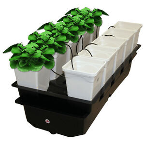 NEW VersaGrow System Aeroponic Kit Hydroponics Grow Box 10 Plant Spray Set-Up
