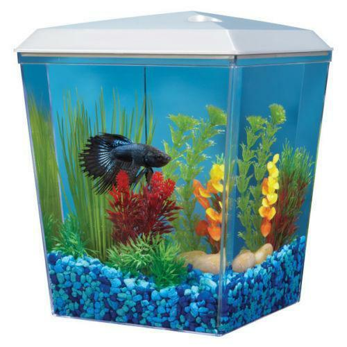 Top fin fish aquariums ebay for Petsmart fish filters