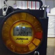 T3 Pigeon Clock