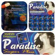 Paradise Pills
