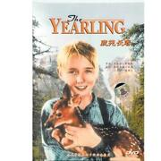 The Yearling DVD