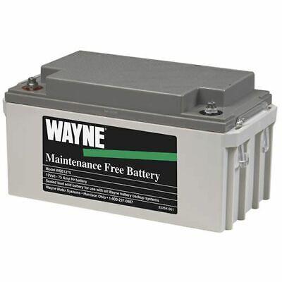 Wayne Wsb1275 - Maintenance Free Agm Backup Sump Pump Battery 75 Amps