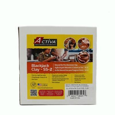ACTIVA 25 lbs. Blackjack Clay (SS-2) Stoneware Clay