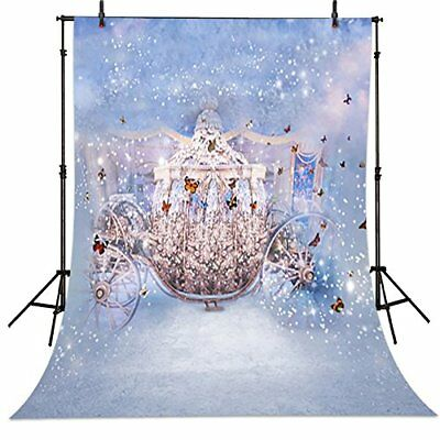 5x7ft Fairy Tales Cinderella Carriage Butterfly party backdrop background (Cinderella Backdrop)