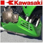 Kawasaki Z750 Bugspoiler
