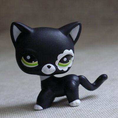 Black Short Hair CAT KITTY  LPS mini Action Figures #2249  Littlest pet shop](Black Kitty)
