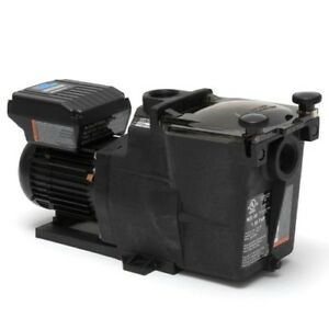 Pool Pumps on SALE!