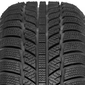 205/55R16 - Evergreen winter tires