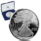American Eagle Ungraded Proof Silver Bullion Coins