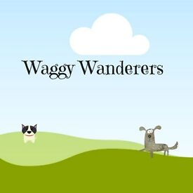 Waggy Wanderers Dog Walking Service in Glasgow