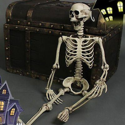 Posable Skeleton Halloween Decor Scary Man Bone Creepy Prop Party Decoration DIY