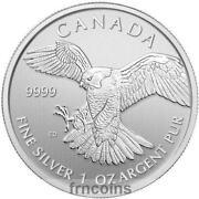 1 oz Silver Canada
