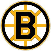 Boston Bruins Decal