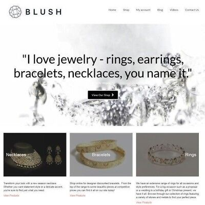 Jewelry Products Website Business Make 1442.24 A Sale Instant Traffic System