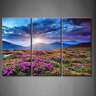 Wall Art Purple Flowers Canvas Painting Landscape Picture Photo Print Home Decor