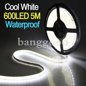 600 Leds 5 meters length 3528SMD Cool White Waterproof