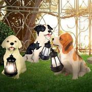 Solar Hund