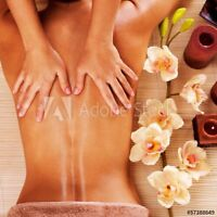 Great Spa services! Body healing Oasis!
