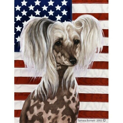 Patriotic (D2) House Flag - Chinese Crested 32069
