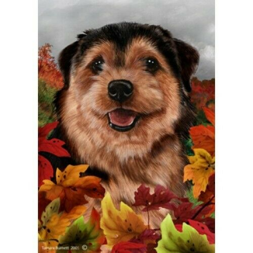 Fall House Flag - Norfolk Terrier 13225