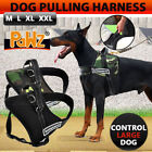 PAWZ Clothing & Shoes for Dogs