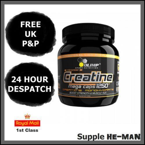 Olimp Creatine Monohydrate: Protein Shakes & Bodybuilding