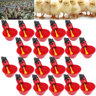 20 Pack Poultry Chicken Water Drinking Cups Feeder Hen Quail Automatic Drinker