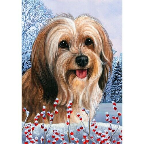 Winter House Flag - Red Sable Tibetan Terrier 15480