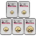 Gold Panda Set