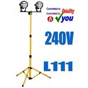 Site Light 240V