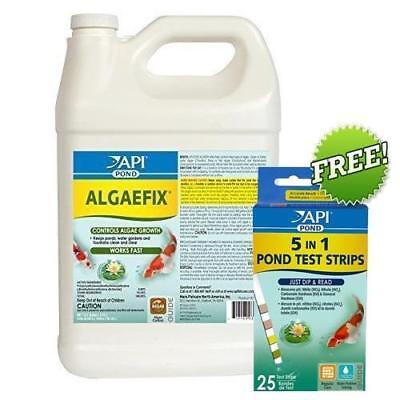 Controlling Algae Pond - API 169C Pond Care AlgaeFix Pond Algae Control 1 Gallon + FREE 5 in 1 Test Kit