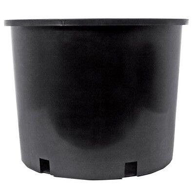Lot of 10 Heavy Duty 1 2 3 5 7 10 15 20 25 Gallon Nursery Pots Vegetables Tomato Heavy Duty Nursery Pot