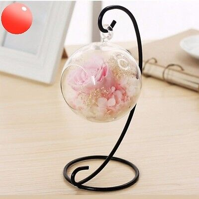 Hanging Preserved Rose Flower & Crystal,Gift Ideas for Her & Sweet Decoration .