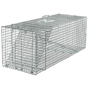 Havahart 1081 Animal Profess Style 1Door Large Raccoon,Small Dogs& Fox Cage Trap