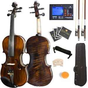 Ebony Fitted Flamed One-Piece Solid Wood Violin  (Brand new)