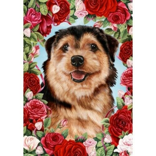 Roses Garden Flag - Norfolk Terrier 192251