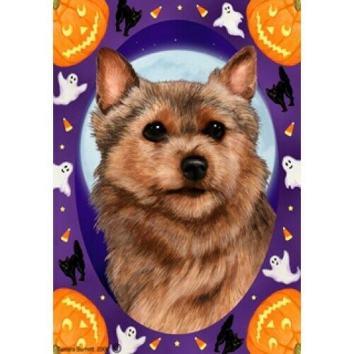 Halloween Garden Flag - Norwich Terrier 121521