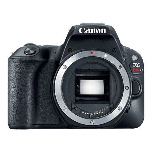 Canon Eos Rebel Sl2 24.2mp Digital Slr Camera Body