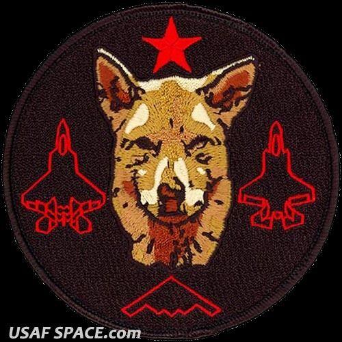 USAF 411th FLIGHT TEST SQ -DEMENTED DINGO-Edwards AFB, CA- ORIGINAL MORALE PATCH
