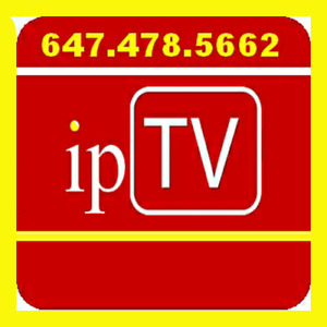 Arabic iptv channels with 1000+ Live Channels