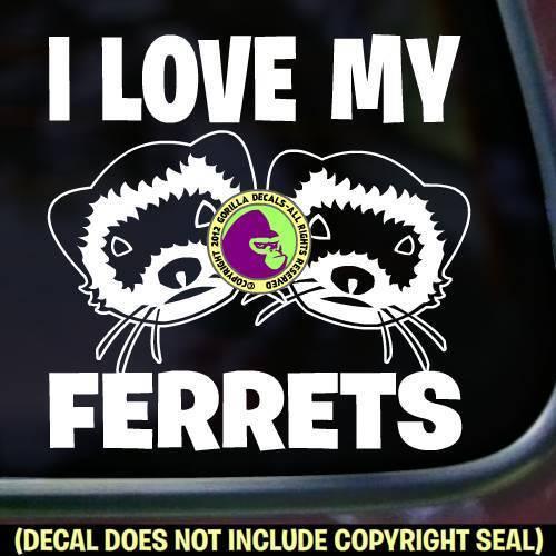 I LOVE MY FERRETS Vinyl Decal Sticker Ferret Crazy Weasel Car Window Wall Sign