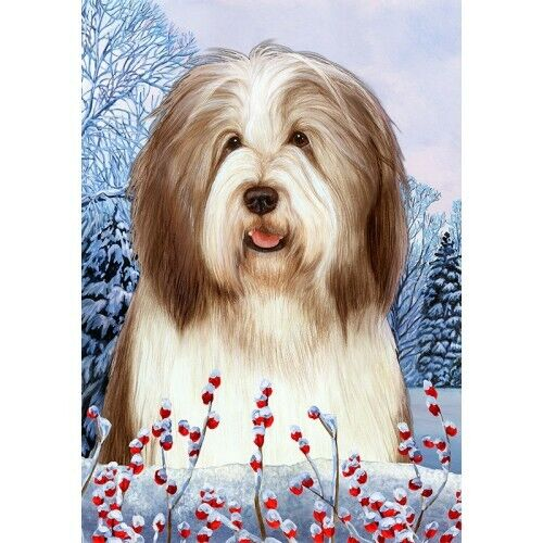 Winter House Flag - Brown and White Bearded Collie 15482