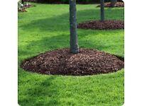 Woodchip mulch/bark chippings (garden, landscaper, plants, trees)