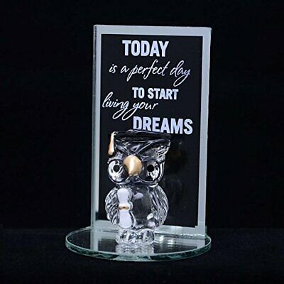 GRADUATION GIFTS IDEAS OWL SMALL SCROLL HAT CAP DEGREE HOLDER DAY CLEAR PRESENT