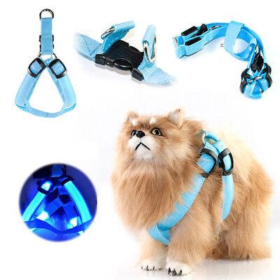 Pet Dog Belt LED Glow Nylon Harness Chest Collar Tether Night Safe Clothes Decor