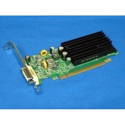 Video Card - PCI Express NVidia Quadro NVS 285 - 128MB