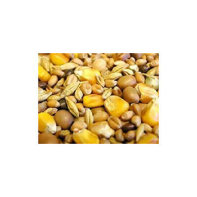 Willsbridge Pigeon Winter Mix 20kg