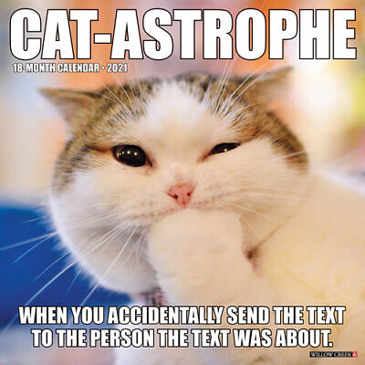 Cat-Astrophe 2021 Wall Calendar (Free Shipping)