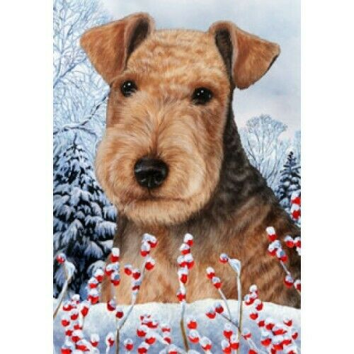Winter House Flag - Lakeland Terrier 15234